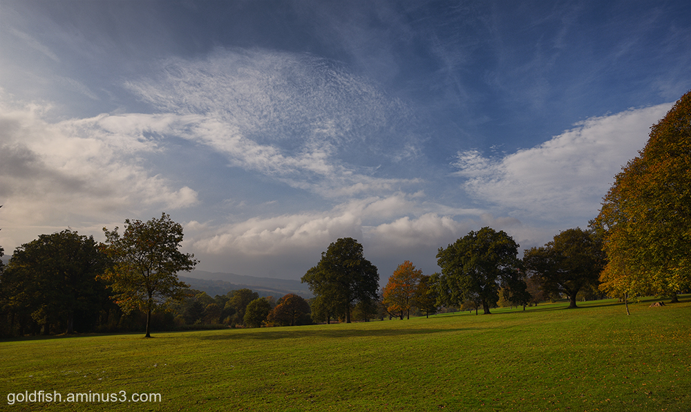 Balloch Castle View
