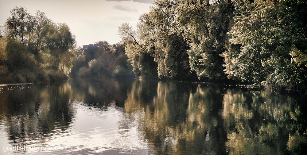 River Eden - Carlisle