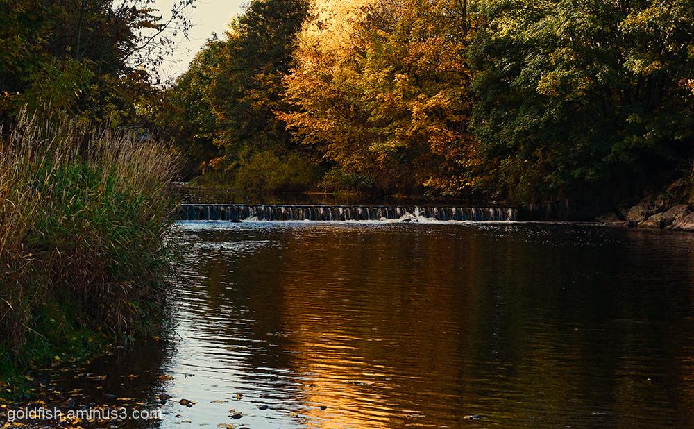 River Eden - Carlisle ii