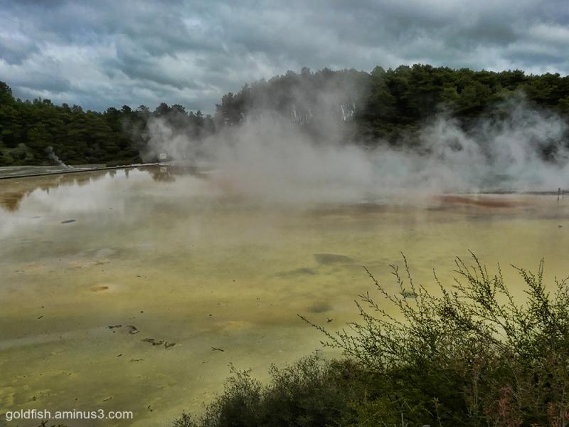 Wai-O-Tapu - Sacred Waters - Thermal Park vi