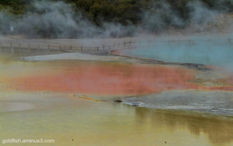 Wai-O-Tapu - Sacred Waters - Thermal Park vii