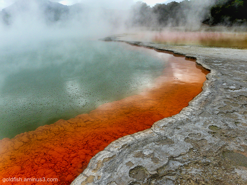 Wai-O-Tapu - Sacred Waters - Thermal Park ix