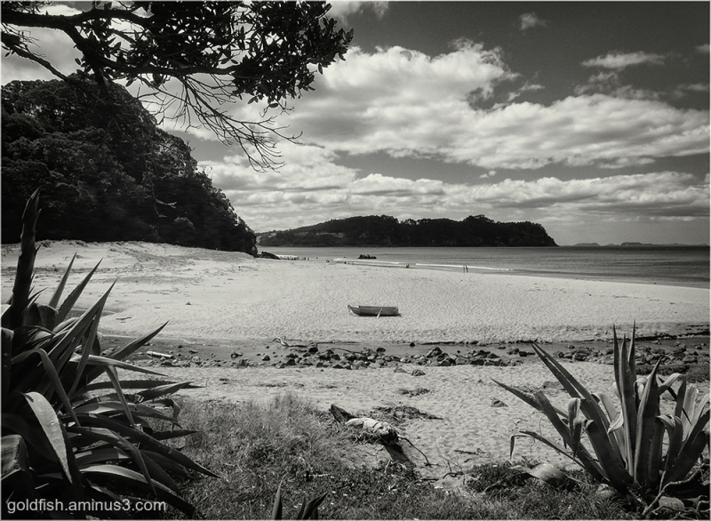 Hot Water Beach i