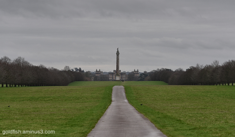The Monument and The House