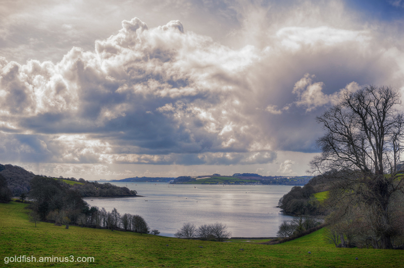 Trelissick Views ii