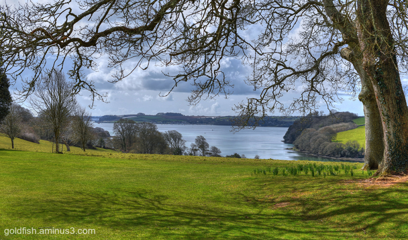 Trelissick Views iii
