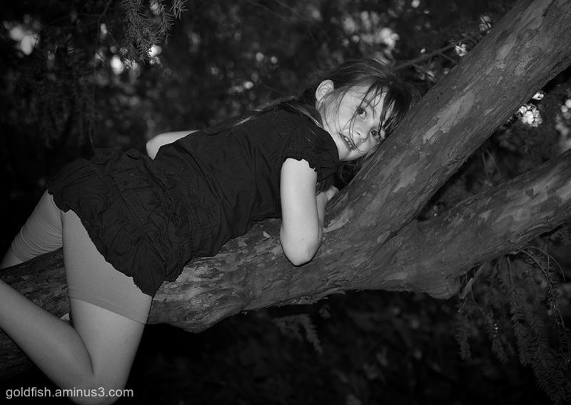 Tree People 4 Devi ii