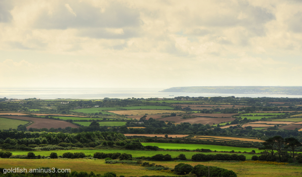 Godolphin Hill View