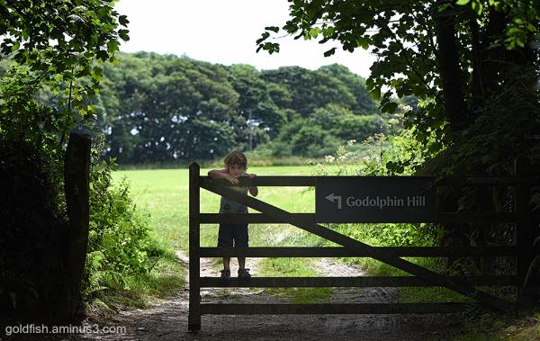 Godolphin Hill View v