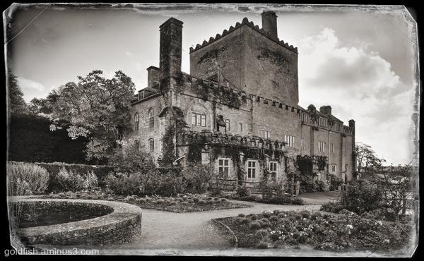 Buckland Abbey iii