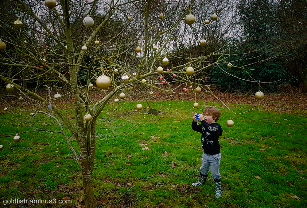 The Bauble Tree