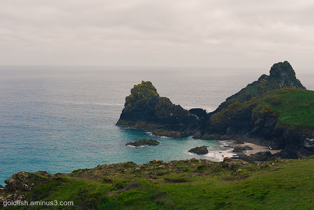 Kynance Cove View iii