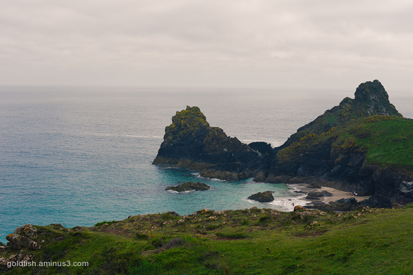 Kynance Cove View iii
