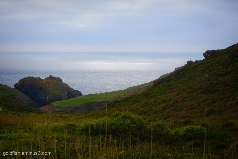 Kynance Cove View iv