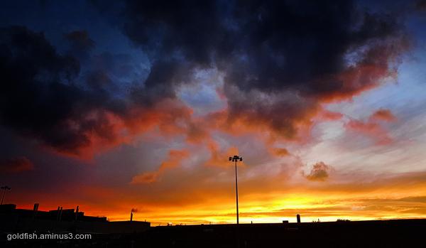 Cowley Sun Set