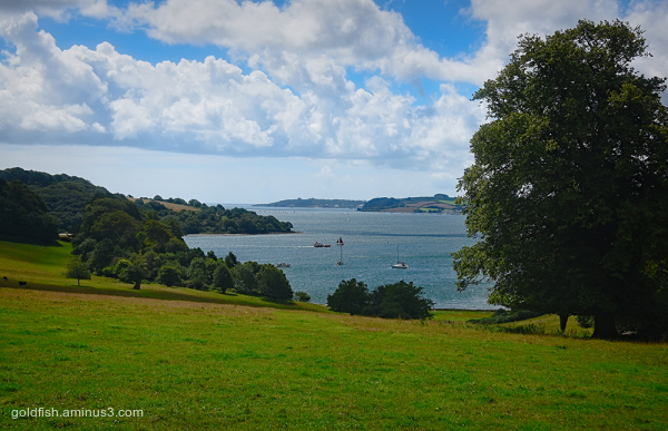 Trelissick House View