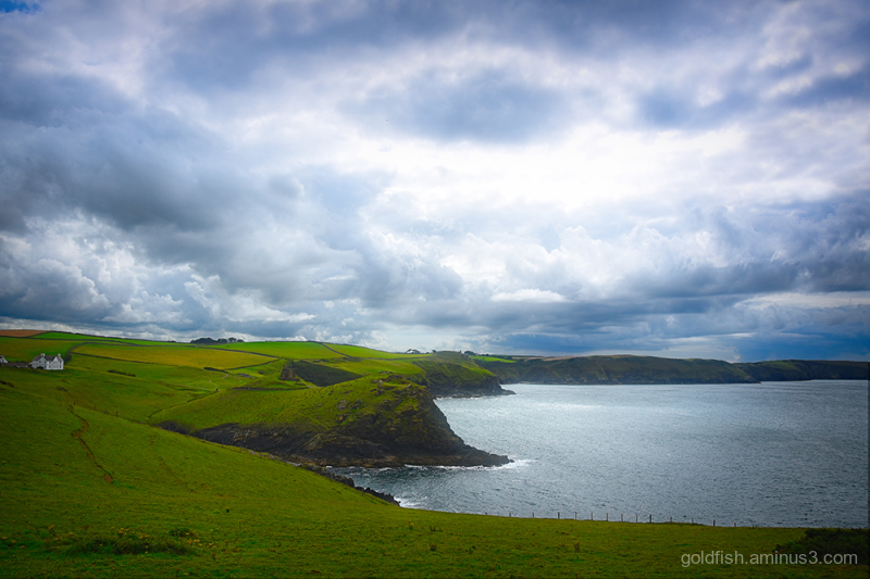 Port Quin View iii