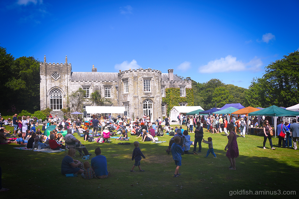 Prideaux Place Garden Party