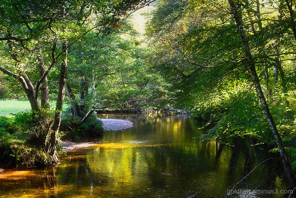 River Fowey @ Lanhydrock