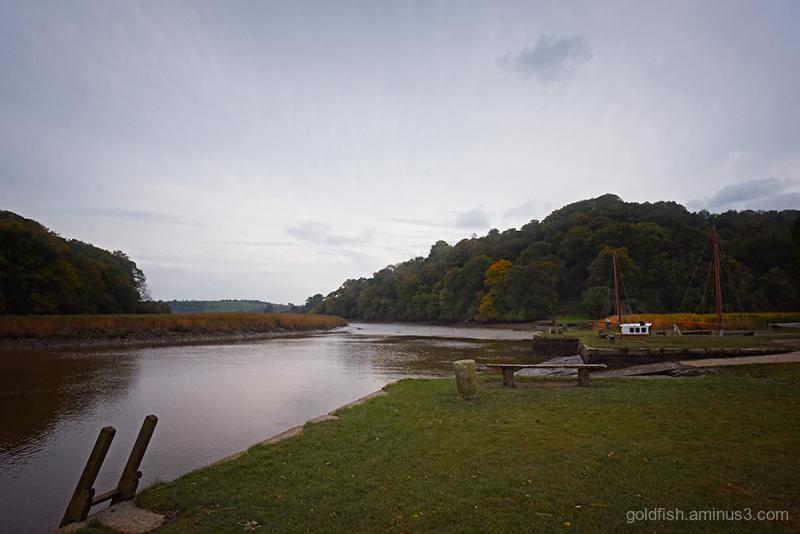 River Tamar @ Cotehele