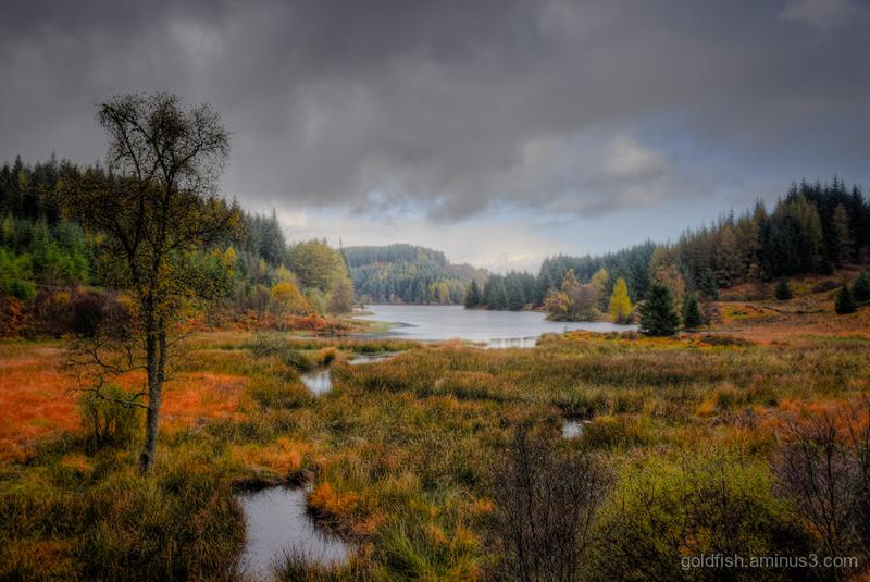 Loch Drunkie - Southern Arm