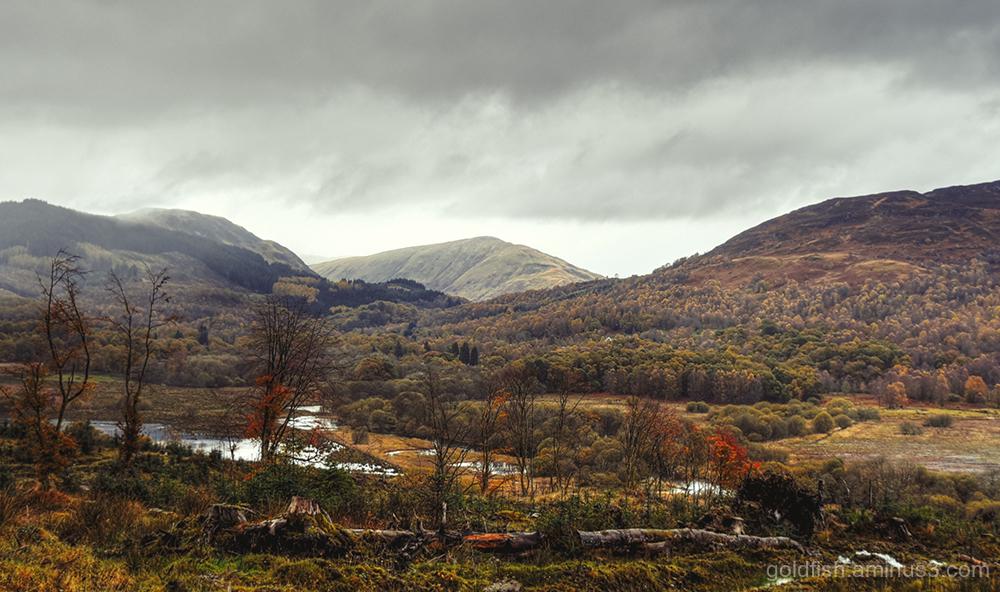 Three Loch Drive View ii