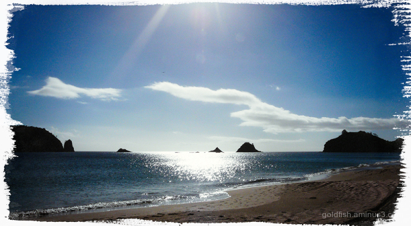 Hahei Beach ii