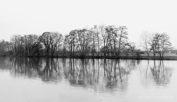River Thames @ Cliveden House ii