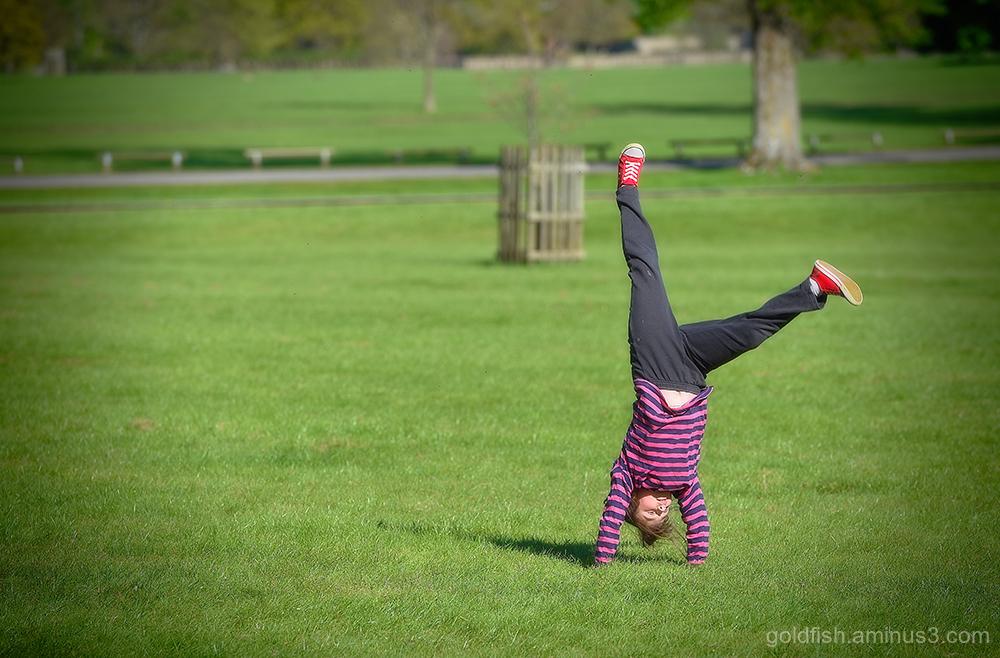 Spring Cartwheel