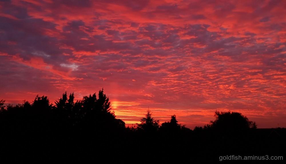 1st Sunset