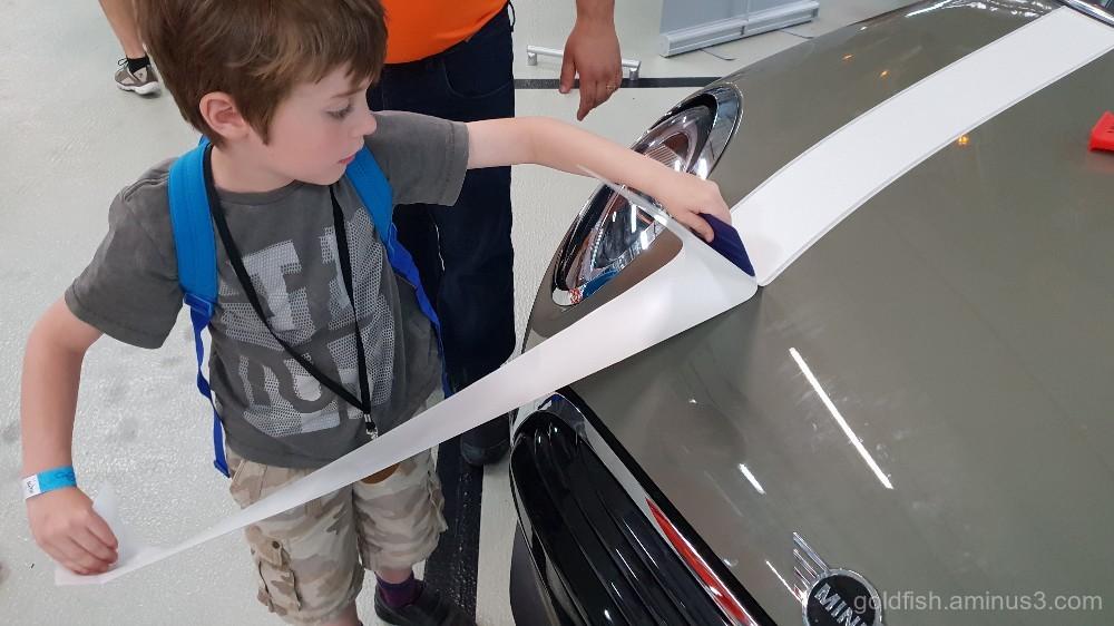 Applying Bonnet Stripes on a Mini