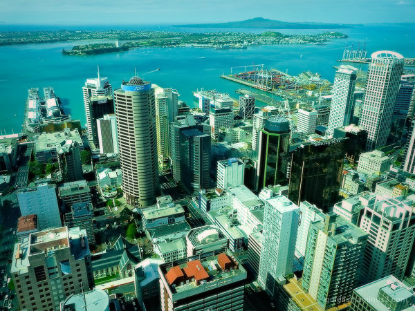 Auckland Skytower View