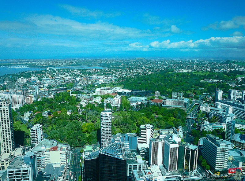 Auckland Skytower View ii