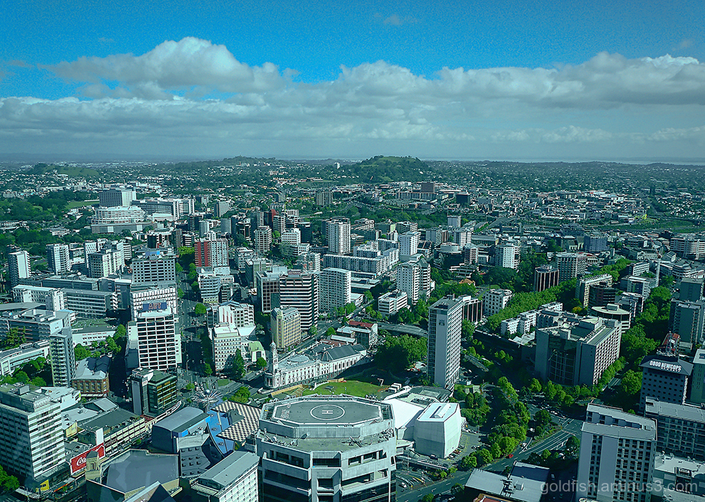 Auckland Skytower View iii