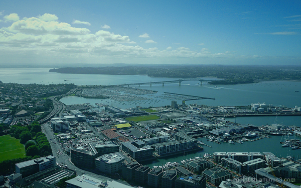 Auckland Skytower View iv