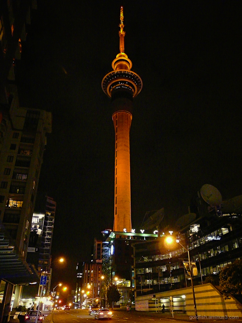 Auckland Skytower @ Night