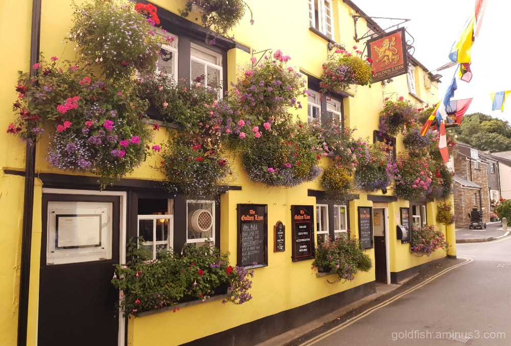 The Golden Lion Hotel - Padstow