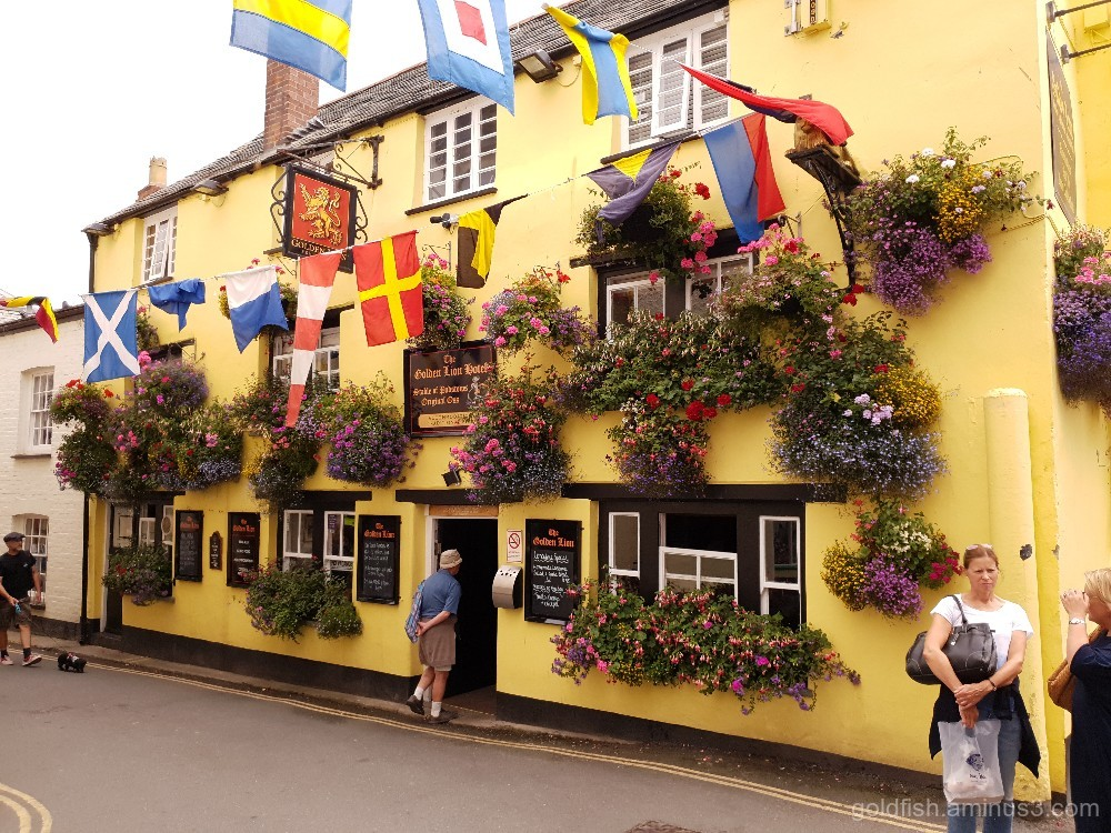 The Golden Lion Hotel - Padstow ii