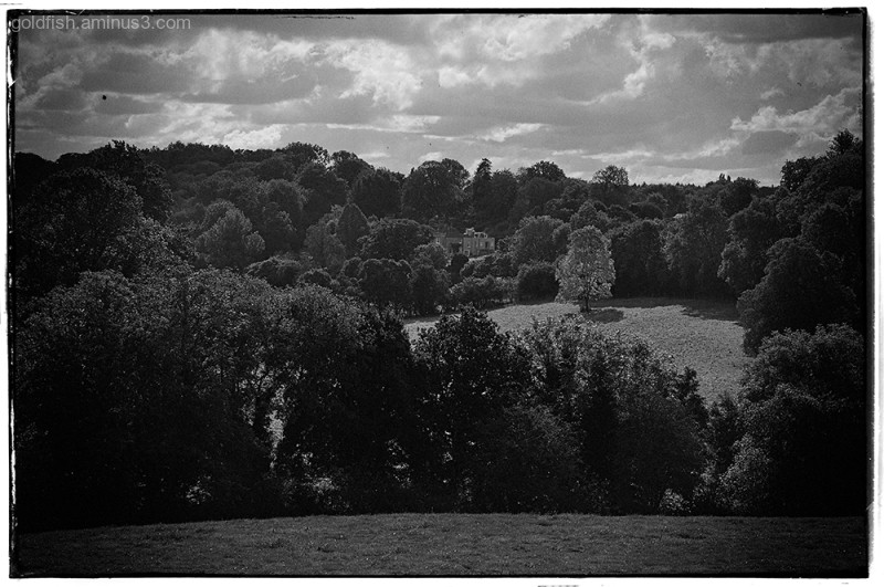 Greys Court View