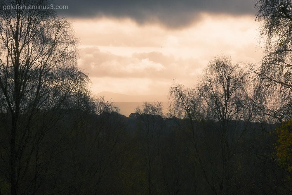 Aberfoyle View VIII
