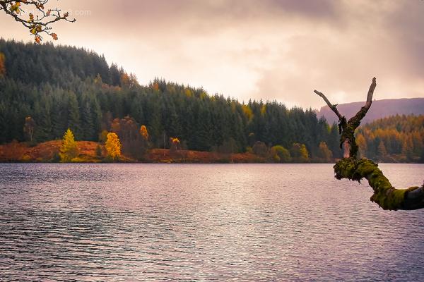 Loch Drunkie View IX