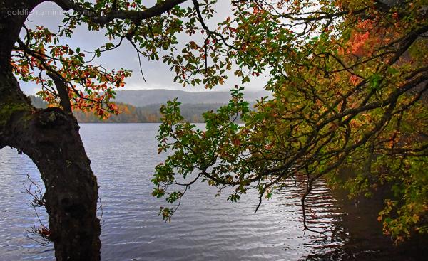 Loch Drunkie View X