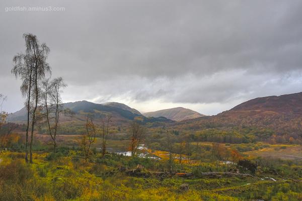 Loch Drunkie View XIII