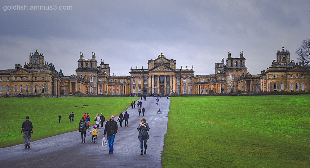 Blenheim Palace III