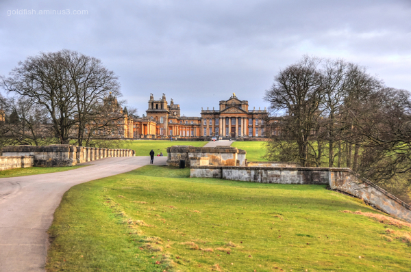 Blenheim Palace VII