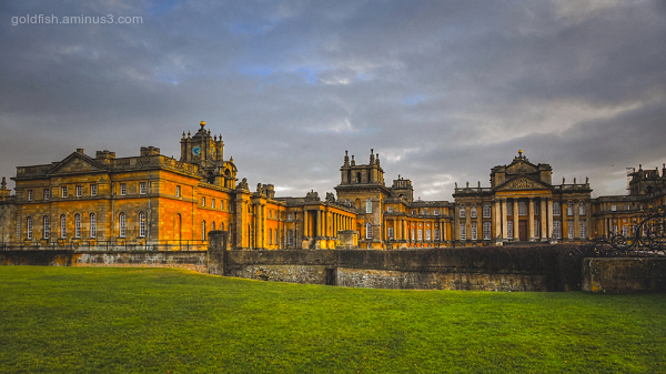 Blenheim Palace VIII