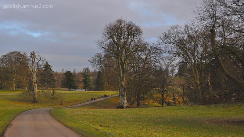 Blenheim Palace XI