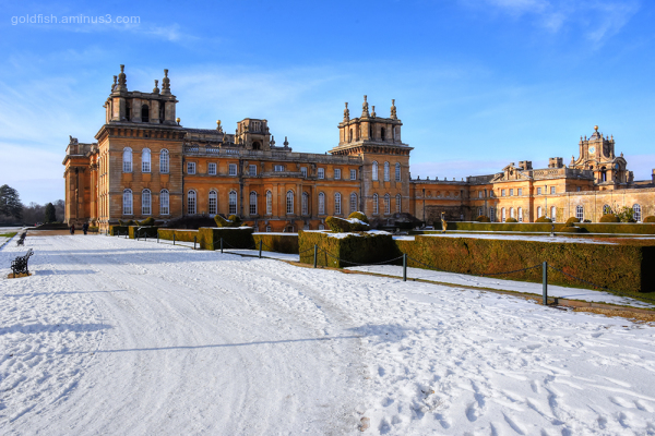 Blenheim Palace XVIII