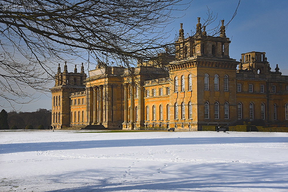 Blenheim Palace XIX