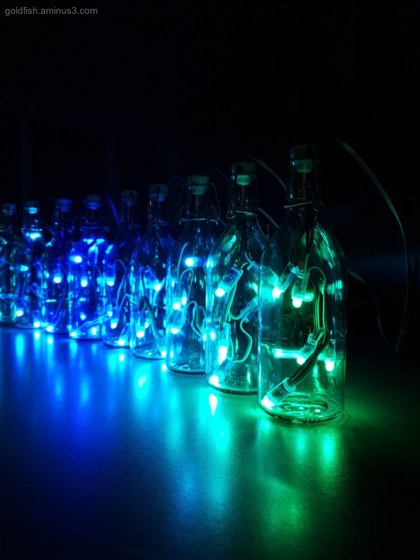 LED Light Bottles